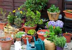 60 Gorgeous Container Gardening Ideas Decorations And Makeover (9)