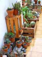 100 Beautiful DIY Pots And Container Gardening Ideas (18)