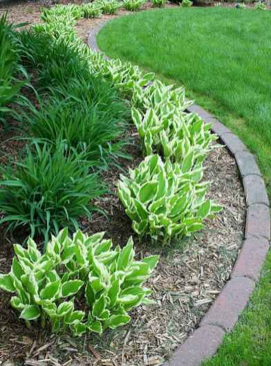 90 Simple and Beautiful Front Yard Landscaping Ideas on A Budget (84)