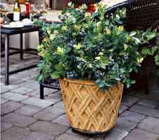 40 Beautiful Container Gardening Decor Ideas For Beginners (27)