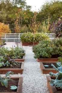 50 Best Garden Beds Design Ideas For Summer (6)