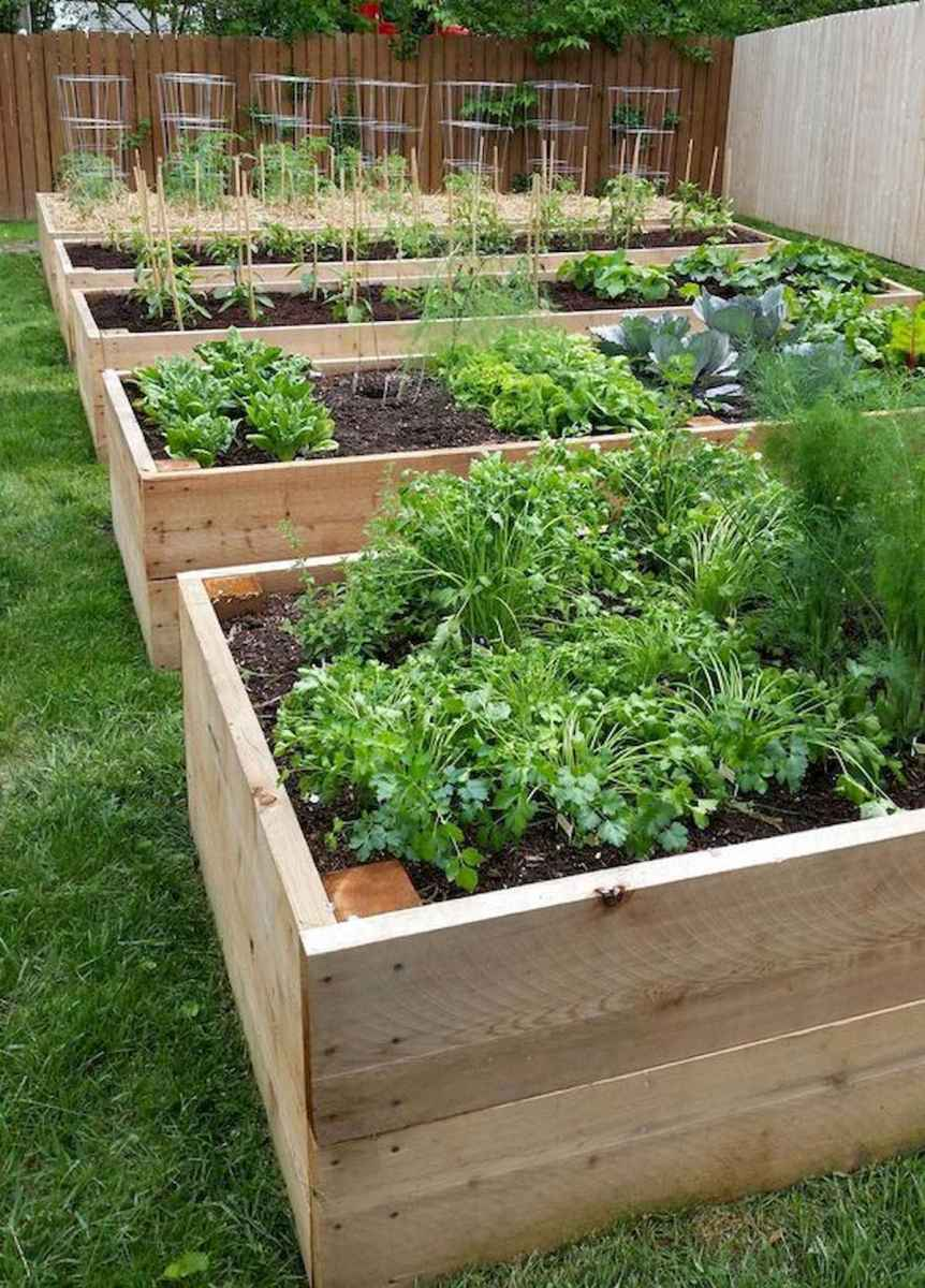 55 Favorite Garden Boxes Raised Design Ideas (12)
