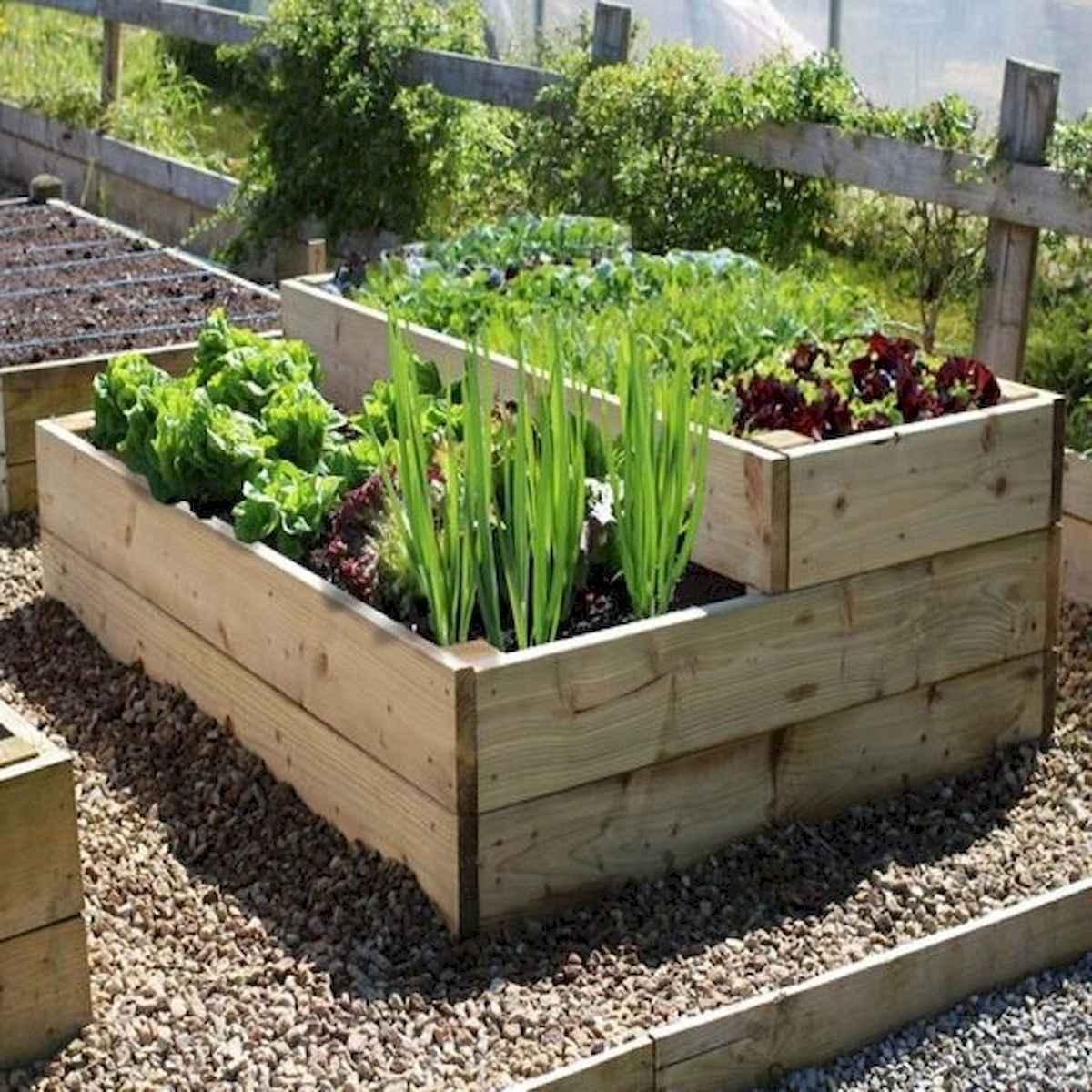 55 Favorite Garden Boxes Raised Design Ideas (17)