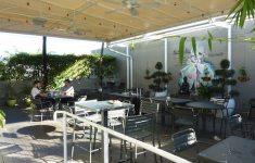 Innovative Green Bar Kitchen That Look Like Paradise
