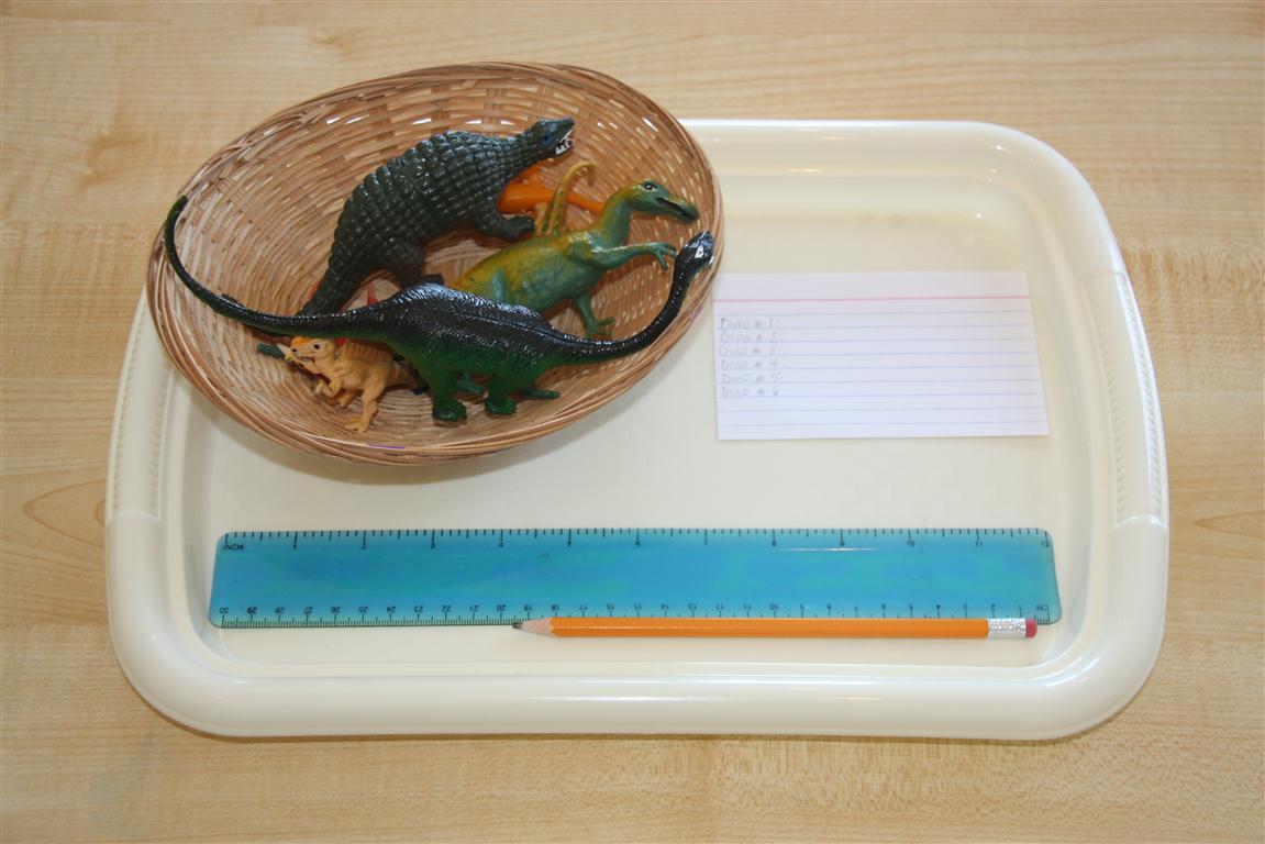 Montessori Inspired Dinosaur Unit