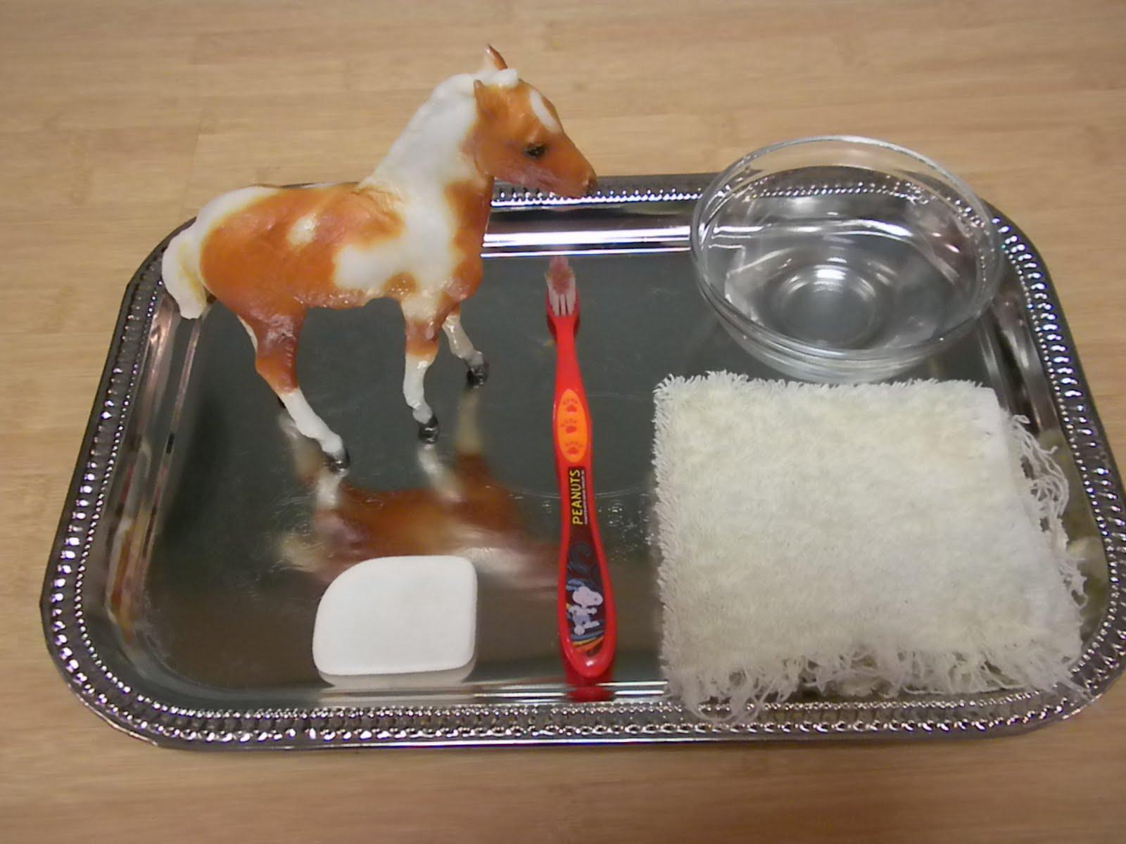Montessori Inspired Horse Unit