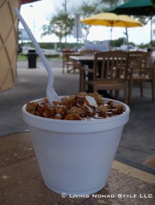 Pecan Praline Ice Cream
