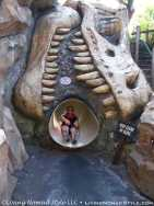 Camp Jurassic - Slide