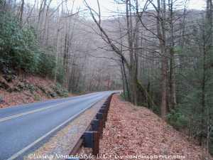 Roadside - Blue Ridge Parkway 1