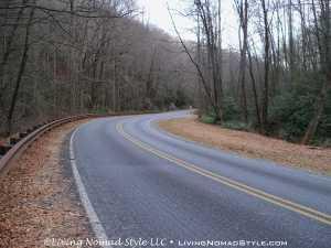 Roadside - Blue Ridge Parkway 3