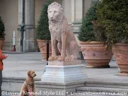 Biltmore Lion With Guest Dog
