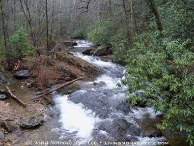 Curtis Creek 1