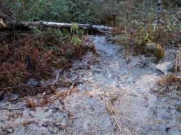 Frozen Ground - High Falls 2