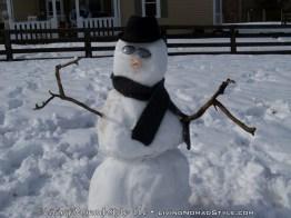 Ethans Snow Man