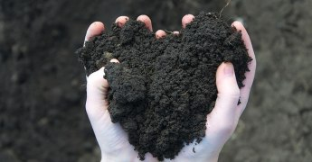 Let's Talk Dirt, Year of the Soil