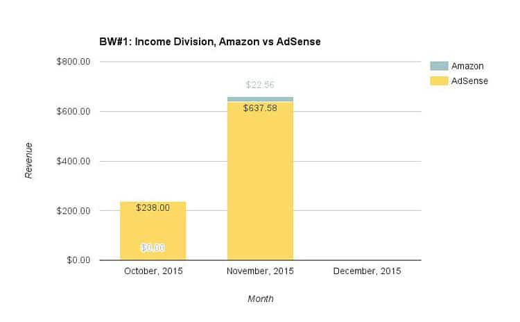 Website #1: Revenue breakdown