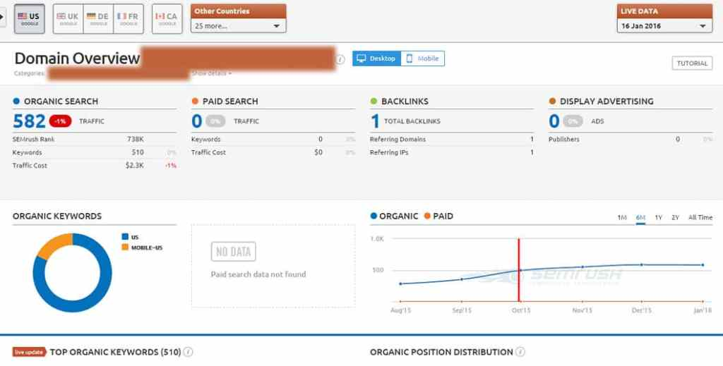 Website #2: Semrush Info