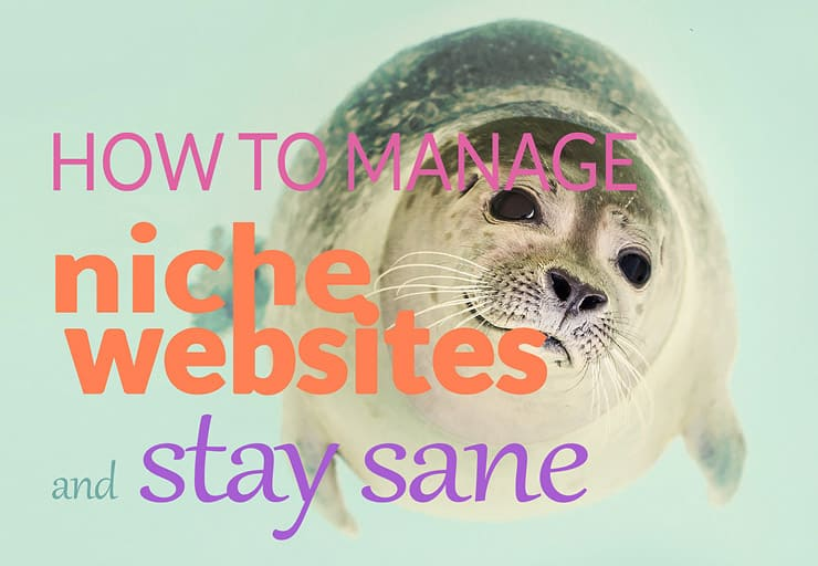 How To Manage Multiple Niche Websites And Stay Sane