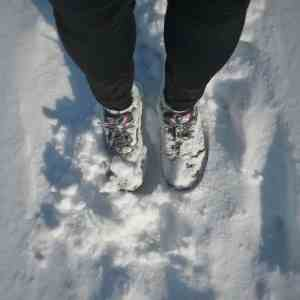 January 2017 Income Report: Winter jogging