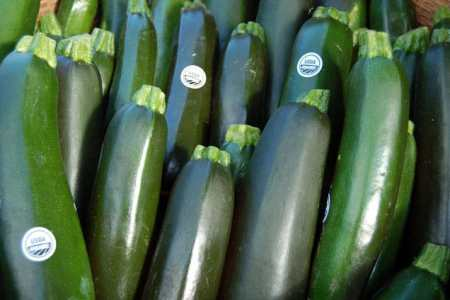 Tasty recipes for cheap and abundant zucchini