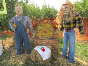 Make a scarecrow from items you have at home