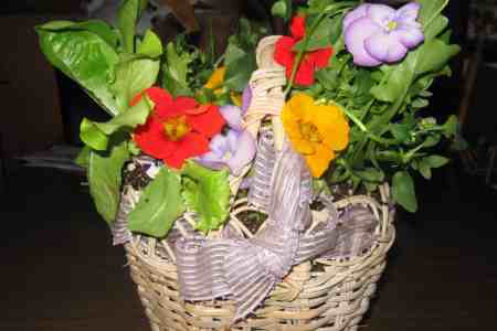 Grow your own live Easter basket