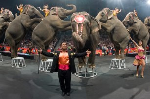 Baby's first circus free, thanks to Ringling Bros.