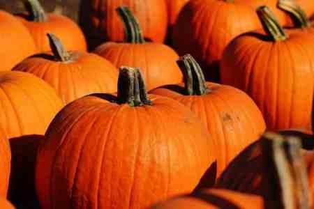 Fall apple and pumpkin recipes + DIY pumpkin puree