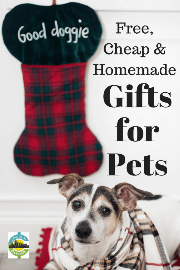 free-cheap-homemade-gifts-for-pets