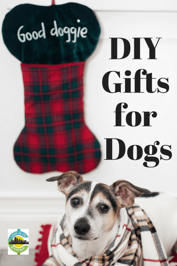 Want to include your pup in the holiday festivities without spending a fortune? Check out these great DIY gifts for dogs.