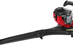 How To Choose The Best Affordable Leaf Blower For Your Garden