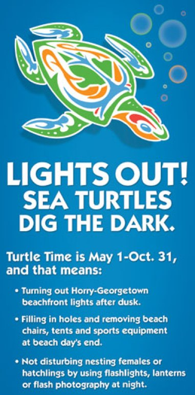 lights out for sea turtle nesting season