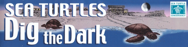 sea_turtles_dig_the_dark_bumpersticker_front