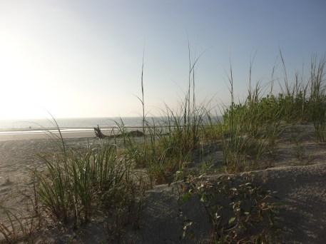 great dunes beach in Jekyll Island