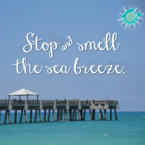 stop and smell the sea breeze