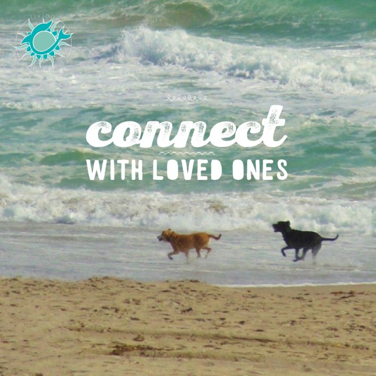 connect with loved ones
