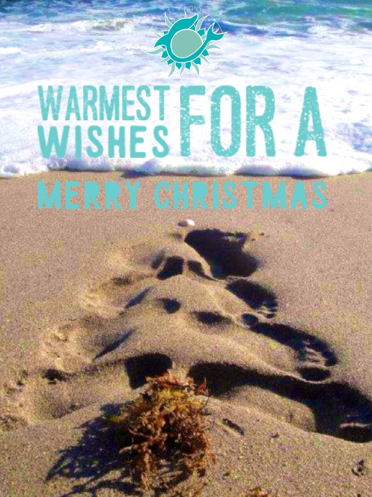 Warmest Wishes for a Merry Christmas