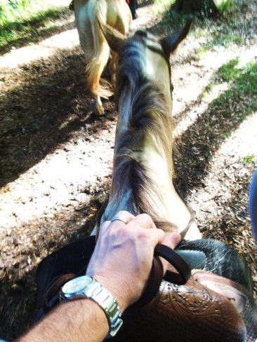 HHI horseback riding (5)