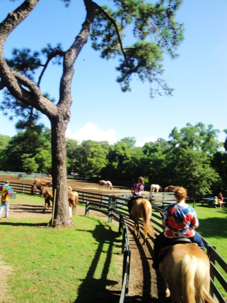 HHI horseback riding