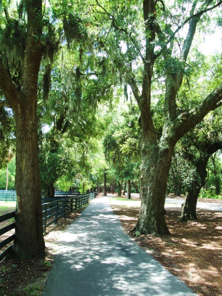 HHI walking & biking path