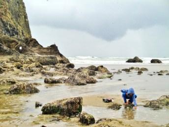 haystack-tide-pooling