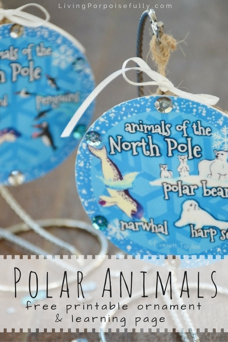 Polar Animals Printable Ornament & Learning Page (FREE!)