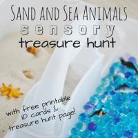Sand and Sea Animals Sensory Treasure Hunt