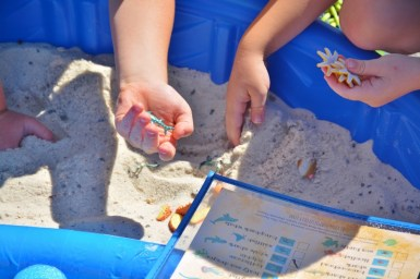 Sand and Sea Animals Treasure Hunt Ocean Themed Activity 2
