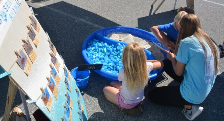 Sand and Sea Animals Treasure Hunt Ocean Themed Activity