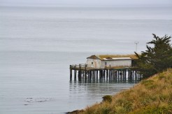 point reyes coast