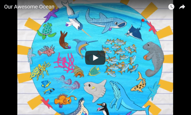 Our Awesome Ocean (video!)