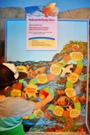Monterey Bay - kid friendly interactive exhibits