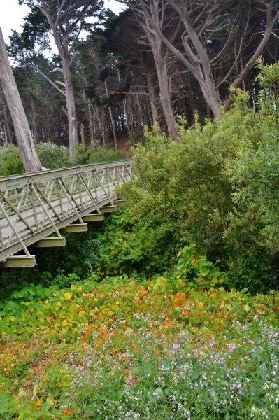 bridge to path in Fitzgerald Marine Reserve