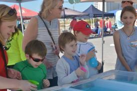 jellyfish races kids (3)